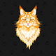 Portrait of a Red Maine Coon Cat - GraphicRiver Item for Sale