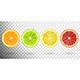 Set of Citrus Fruits - GraphicRiver Item for Sale