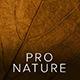 Professional Nature Desktop & Mobile Lightroom Presets - GraphicRiver Item for Sale