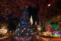 Christmas Tree at Vienna Christmas Market, Rathausplatz, Austria - PhotoDune Item for Sale