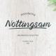 Nottingsam Script Font - GraphicRiver Item for Sale