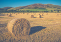 Scottish Farming Scene - PhotoDune Item for Sale