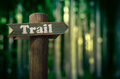 Forest Trail Sign - PhotoDune Item for Sale