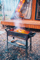 BBQ fish steaks. Pieces of salmon are fried over an open fire - PhotoDune Item for Sale