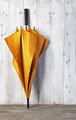 orange umbrella - PhotoDune Item for Sale