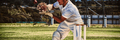 Wicketkeeper catching cricket ball behind stumps - PhotoDune Item for Sale