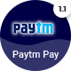 Active eCommerce Paytm add-on - CodeCanyon Item for Sale
