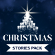 Christmas Sale - Instagram Stories - VideoHive Item for Sale