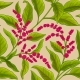Amaranth Plant Vector Pattern on Color Background - GraphicRiver Item for Sale