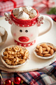 Delicious homemade christmas hot chocolate or cocoa with marshmellows - PhotoDune Item for Sale