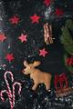 Santa reindeer made of gingerbread cookie on black background - PhotoDune Item for Sale
