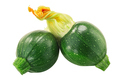 Baby Tondo zucchini with flower  isolated - PhotoDune Item for Sale