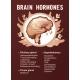 Human Brain Hormones Information Poster - GraphicRiver Item for Sale