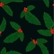 Seamless Pattern Holly Branch with Berry and - GraphicRiver Item for Sale