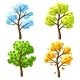 Four Seasons Trees. - GraphicRiver Item for Sale