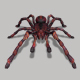 Spider - GraphicRiver Item for Sale