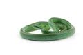Vietnamese longnose rat snake isolated on white background - PhotoDune Item for Sale