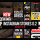 Instagram Stories Version 2 - VideoHive Item for Sale