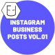 Instagram Business Posts Vol.01 - VideoHive Item for Sale