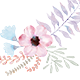 Floral Watercolor Illustrations Clipart PNG - GraphicRiver Item for Sale