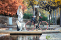 Two beautiful friends talking while walking with their dog and bike on a bridge in autumn. - PhotoDune Item for Sale