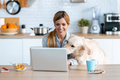 Beautiful dog looking the laptop while her smiling owner working with him in the kitchen at home. - PhotoDune Item for Sale