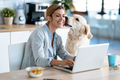 Beautiful lovely dog kissing her smiling owner while she working with laptop in the kitchen at home. - PhotoDune Item for Sale