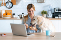Lovely dog eating breakfast of her owner while she working with laptop in the kitchen at home. - PhotoDune Item for Sale
