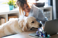 Beautiful dog looking the laptop while her smiling owner working with him in living room at home. - PhotoDune Item for Sale