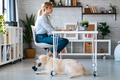 Attractive woman working with laptop while her cute dog keeping her company in living room at home. - PhotoDune Item for Sale