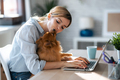 Cute lovely dog kissing her smiling owner while she working with laptop in the kitchen at home. - PhotoDune Item for Sale