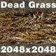 Dead Grass_01 - 3DOcean Item for Sale