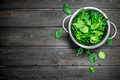 Spinach in a saucepan. - PhotoDune Item for Sale