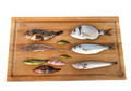 fishes for Fish soup - PhotoDune Item for Sale