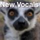 New Vocals