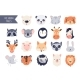 Animal Baby Faces Set Vector Illustration - GraphicRiver Item for Sale