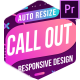 Auto Resize Call-Out - VideoHive Item for Sale