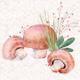 Mushrooms Digital Illustration Clipart PNG - GraphicRiver Item for Sale