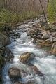 Spring Sun on a Mountain Stream - PhotoDune Item for Sale