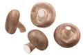 Fresh Shiitake mushrooms (Lentinula edodes) isolated, top  view - PhotoDune Item for Sale