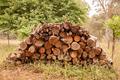 Firewood pile - PhotoDune Item for Sale