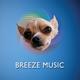 Chiwowa Groovy Latin Jazz