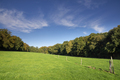 Hilly landscape near Nijmegen - PhotoDune Item for Sale