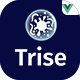 Trise - Vuejs Disinfection & Cleaning Template - ThemeForest Item for Sale