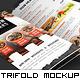 Trifold Brochure Mockup Pack - GraphicRiver Item for Sale