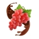 Red Grape Branch in Chocolate Splash - GraphicRiver Item for Sale
