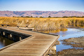Boardwalk going through wetlands - PhotoDune Item for Sale