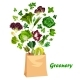 Greenery Salads and Greens in Vector Shopping Bag - GraphicRiver Item for Sale