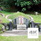 Singapore Bukit Brown Chinese Cemetery - VideoHive Item for Sale