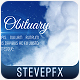 Heaven Biography Obituary - VideoHive Item for Sale